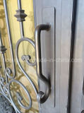O costume Mão-Forjou portas de entrada da parte dianteira do ferro feito