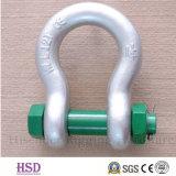الفولاذ المقاوم للصدأ الأوروبي كبير القيد D نوع لرفع (3mm و-50MM)