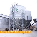보일러 가금 자동적인 닭 공급 시스템을 올리는 Tianrui