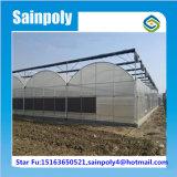 Galvanisiertes Stahlgewächshaus für Wassermelone
