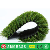Фабрика Allmay сделала синтетическую траву от искусственной дерновины травы