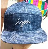 Coton 100% 5 casquettes de baseball de sport brodées par panneaux