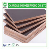12mm/15mm/18mm Two Times Hot Press Formwork Plywood