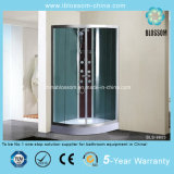 Zaal van de Sauna van de Stoom van het Huis van de Verkoop van China de Hete (bls-9803)