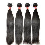 Les meilleurs cheveux malaisiens droits lisses de vente de Vierge bon marché de bonne qualité