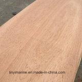 Shandong de contreplaqué d'eucalyptus pour meubles