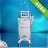 아름다움 기계를 체중을 줄이는 Cryolipolysis & 공동현상