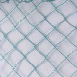 Vierge 100 % Vert PEHD Anti-Bird Net
