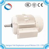 De Schokbestendige AC van Ycch Explosiebestendige ElektroMotor Van uitstekende kwaliteit