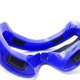 De blauwe veiligheidsbril met winddicht en stofdicht