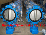 Lever Wafer Metal Hard Sealing, Fluorine Plastic Sealing Eccentrivity Butterfly Valve (D73H)