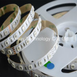 Coloridas luces SMD5050 RGB LED tiras