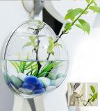 El tanque de pescados casero redondo del vidrio de acrílico de la decoración