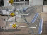 가금 & 가축 농장 가득 차있는 자동적인 층 닭 감금소 장비