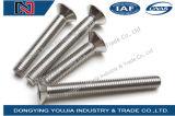 ISO10642ステンレス鋼の六角形のソケットによってさら穴を開けられるフラットキャップヘッドねじ