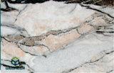 Мраморный панель украшения конструкции типа или камня для изоляции украшения стены фасада