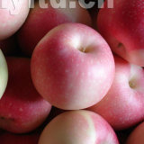 新しく赤いお祭りApple、金Apple、Huaniu Apple