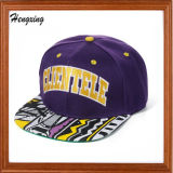カスタム3D刺繍5のパネルの帽子