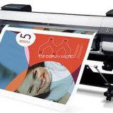 デジタル印刷からのPVCかペーパー広いフォーマットで印刷されて自由な配達習慣ポスターを含んでいる