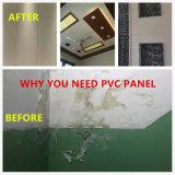 Largeur 200mm250mm/300mm en plastique du panneau de PVC pour le plafond et mur Rn- 225