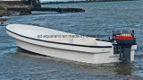 Aqualand 23feet 7m 섬유유리 단 하나 선체 Panga 어업 모터 일 배 (230c)