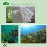 공급 고품질 E401 음식 급료 나트륨 Alginate
