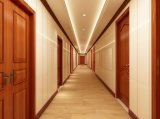 La décoration intérieure des portes étanches WPC écologique pour l'KTV
