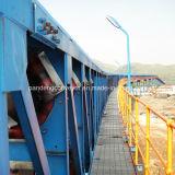 Transportador de la pipa/transportador/sistema de transportador para el proyecto de aceite y del gas