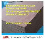 China-Großhandelsdekoratives Furnierholz-Innenpanel mit Vergaser und Fsc-Bescheinigung