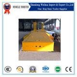 Semi Aanhangwagen van uitstekende kwaliteit van de Vrachtwagen van het Bed van de Leiding van 3 As de Hydraulische Lage voor Bevordering