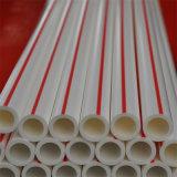L'agriculture cultivant la pipe en plastique du tube Dn20~110mm PPR de l'eau classe le tableau