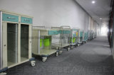 مستشفى حامل متحرّك قوة طلية فولاذ عربة طبّيّ ([أغ-غس003])