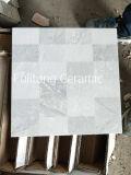Azulejo de suelo esmaltado Niza inyección de tinta de los diseños de la alta calidad de cerámica
