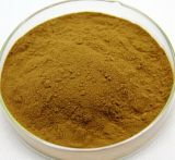 Bulbus Allii Macrostemonis Extract