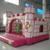Bouncer inflável para o partido (CL-011)