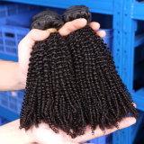 처리되지 않는 자연적인 파도치는 싼 Remy 사람의 모발 연장 7A 크로셰 뜨개질 Virgin 자연적인 머리