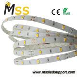 공장 도매 SMD 5730 LED 지구 빛