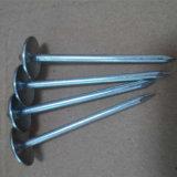 Das meistgekaufte Reibungs-Regenschirm-Schutzkappen-Fliese galvanisierte Heck