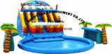 شاطئ دعم بركة [غوغل] قابل للنفخ ماء منزلق