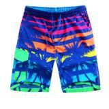 Shorts della scheda che praticano il surfing gli Shorts della spiaggia di Shorts