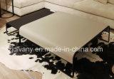 새로운 형식 작풍 거실 커피용 탁자 (T-95A & T-95B)