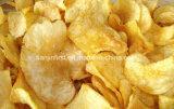 Macchina di frittura continua delle patatine fritte per lo spuntino