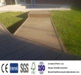 Decking Древесин-Пластмассы Составной-WPC сделанный в загородке стены Panel/WPC China/WPC