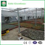 PE Serre van de Tunnel van de Film de Plastic Hoge voor Bloemen/Groenten