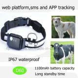 Traqueur imperméable à l'eau de l'animal familier GPS avec 1100mAh la batterie D60