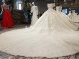 Aoliweiya Ballkleid-Kristallweiß/Champagne-Hochzeits-Kleider 010614