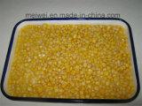Qualität in Büchsen konservierter süsser Mais