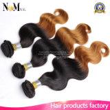 Preiswertes Menschenhaar 4 Bündel 100g Bündel-brasilianische Haar-ein Tag zwei Ton-Menschenhaar-Webart versendend