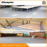 Pisos de PVC para el kindergarten; suelos de PVC para la escuela; suelos de PVC para el salón de baile; suelos de PVC para Bus