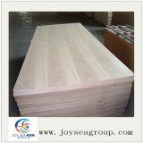 Poplar Okoume Bintangor Birch folheadas compensado de madeira comercial